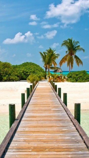 Download · Summer, Bridges, Palms, Nature, Beach,360x640,640x360,free,