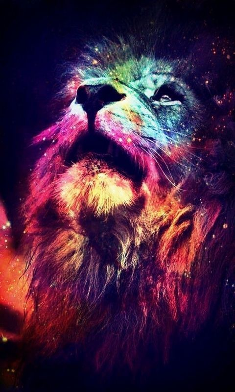 Download · abstract_lion,480x800,800x480,free,hot,mobile phone wallpapers ,www.