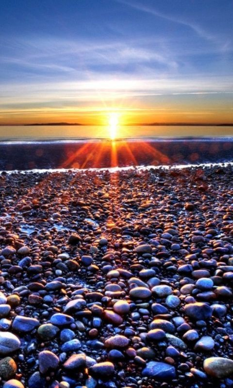 Download · morning sun,480x800,800x480,free,hot,mobile phone wallpapers,www
